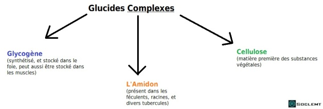 glucides-complexes