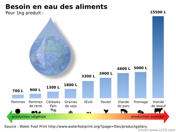 eau-aliments