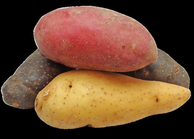 potato-2147541_960_720