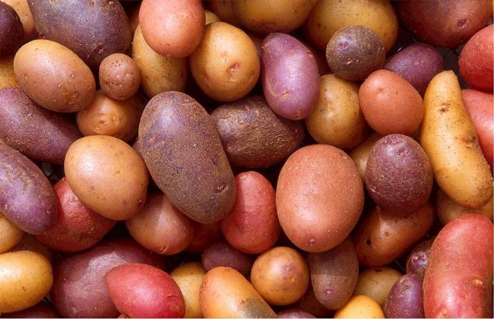 potatoes-522486_960_720